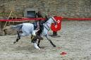 ANS8624 Le Puy du Fou 2012