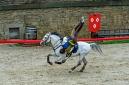 ANS8654 Le Puy du Fou 2012