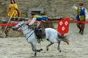 ANS8665 Le Puy du Fou 2012