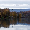 lac du Malsaucy||<img src=_data/i/galleries/stock_animalier_et_qq_paysages/_DSF7413_lr2_srvb-th.jpg>