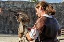 ANS0201 lr les aigles des remparts 2012