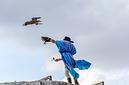 ANS0247 lr les aigles des remparts 2012