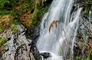ANS5611 lr Cascade de Kletterbach