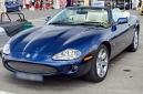 ANS5914 lr Jaguar